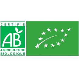 Kombucha  mango 50cl karma