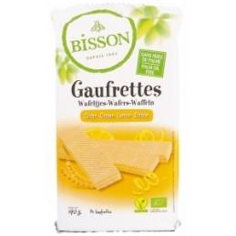 Sirop d' agave en poudre...